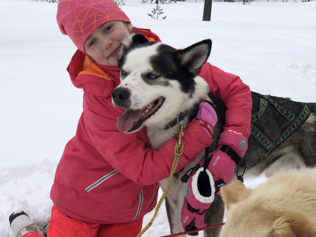 Prova på hundspann tur i Sälen
